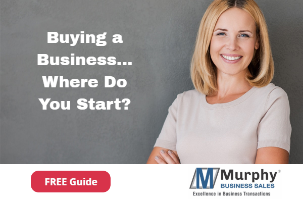 Buying a Business Free Download